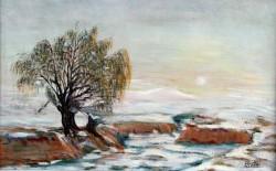 alte Picturi Rasarit.hibernal