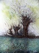 alte Picturi Salcii.fete.de.balta