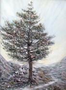 alte Picturi Solitarul4