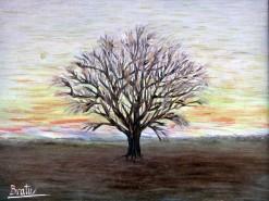 alte Picturi Solitarul5