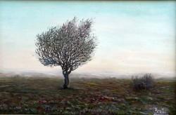 alte Picturi Solitarul6.000