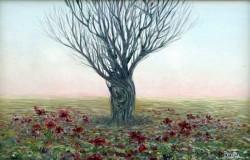 alte Picturi Solitarul72