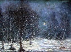 alte Picturi Visul.unei.nopti.de.iarna.000