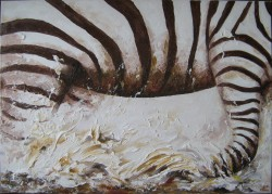 alte Picturi Zebra alergand