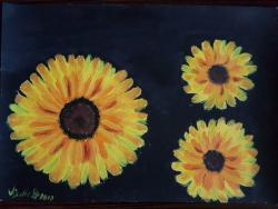 alte Picturi zambetul soarelui