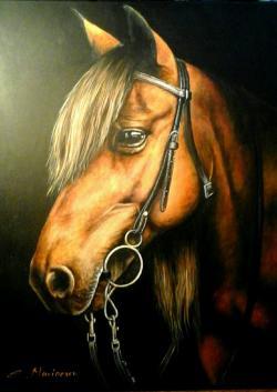 Picturi cu animale Acryl painting horse