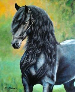 Picturi cu animale pictura cal superb ne