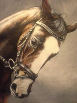 Picturi cu animale tablou cap de cal pat