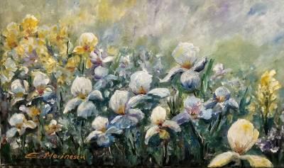 Picturi cu flori Camp cu irisi