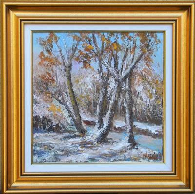 Picturi de iarna DIN ALBUMUL IERNII 2