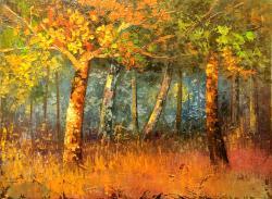 Picturi de toamna Lumina soarelui dimine