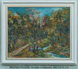 Picturi de toamna Pe valea Cisnadioarei,