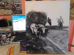 Picturi de vara Car cu boi ..Alb negru .
