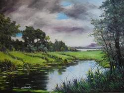 Picturi de vara peisaj de vara dupa ploa
