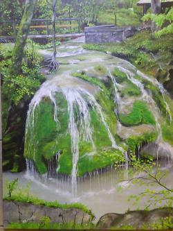 Picturi de vara romania frumoasa.cascada