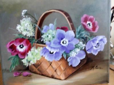 Poza Anemone bicolore