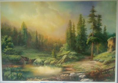 Poza Asfintit in padure