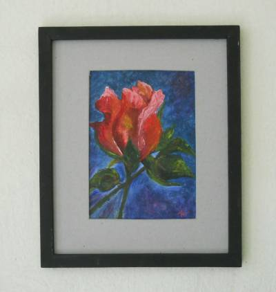 Poza boboc de trandafir