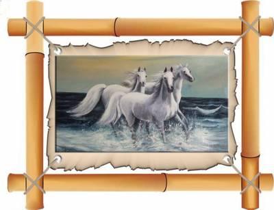 Poza caii in spuma mari   x19