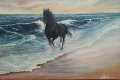 Poza cal liber pe plaja 3