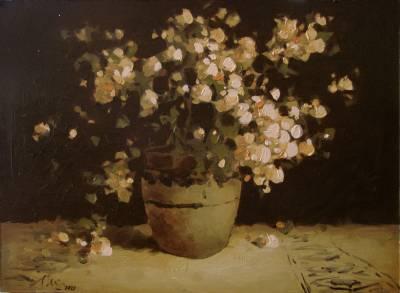 Poza Cana cu flori de primavara,ulei car