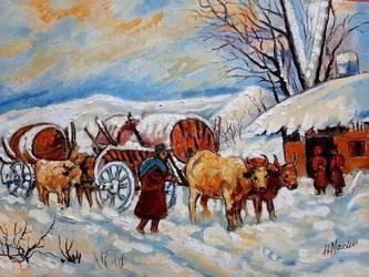 Poza Car cu boi iarna