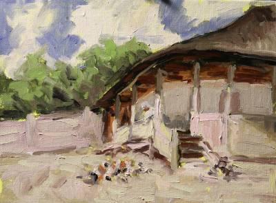 Poza Casa la Agapia