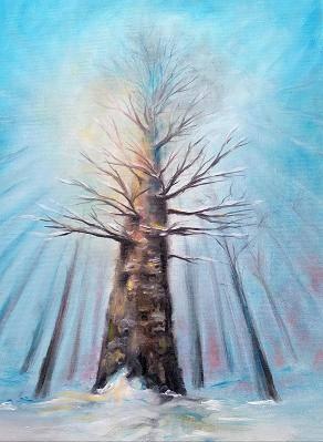 Poza copac batran iarna
