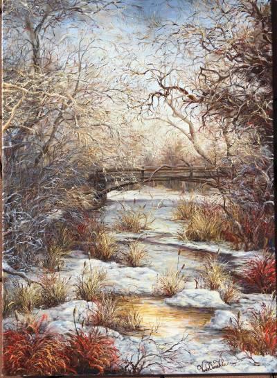 Poza Culori in iarna