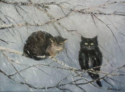 Poza Doua pisici