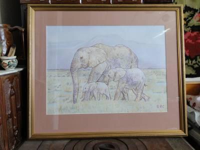 Poza Familiade elefanti
