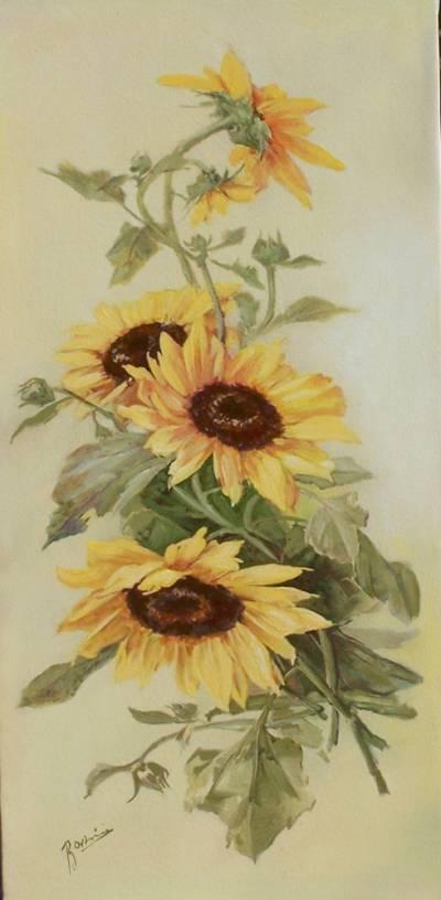Poza Floarea soarelui decorativa