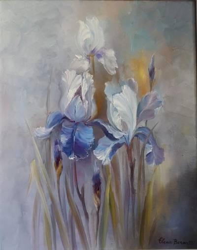 Poza Flori de irisi
