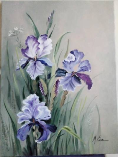 Poza Irisi abastri si violet