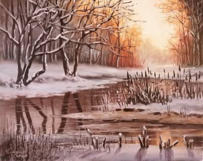 Poza Lacul iarna 2020
