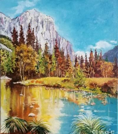 Poza Linistra lacului