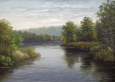 Poza Malul lacului 2019