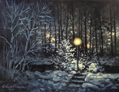 Poza Noapte de iarna