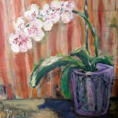 Poza Orhidee