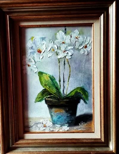 Poza Orhidee alba in vas colorat