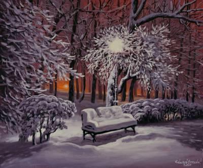 Poza Parcul intr-o noapte de iarna 2020