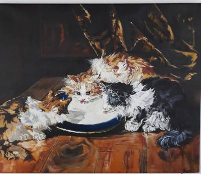 Poza Pisici mâncând
