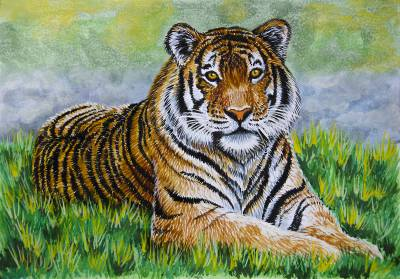 Poza Tigrul