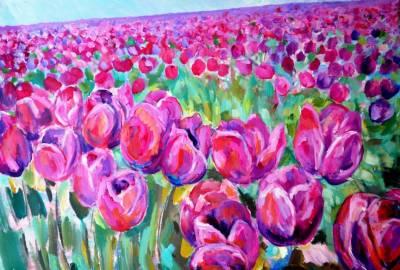 Poza Tulip field