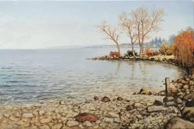 Poza vedere de pe malul lacului 2020
