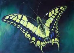 Picturi abstracte/ moderne Fluture1
