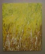 Picturi abstracte/ moderne ,,vis in iarba uscata,,