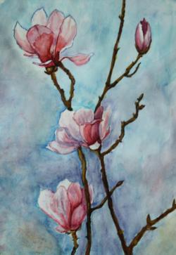 Picturi acuarela Magnolii spre cer 2