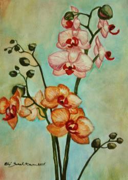 Picturi acuarela Orhidee, primavara
