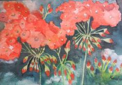 Picturi acuarela Flori de muscata